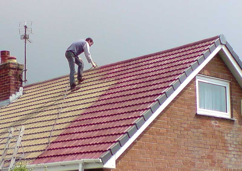 roof cleaning - Roof Cleaning