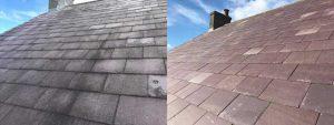 Softwash tiled roof results
