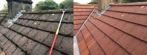 Softwash Swansea Roof